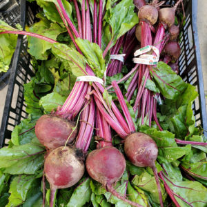 Tamai Farms Red Beets