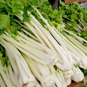 Finley Farms White Celery