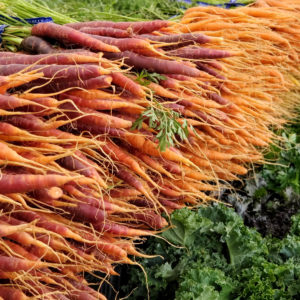McGrath Family Farm Baby Rainbow Carrots